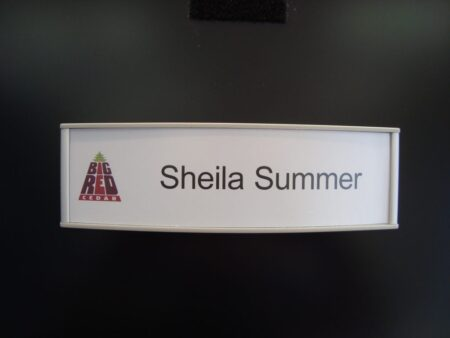 VSC8.5-2.25P Curved Office Name plate with Big Red sample